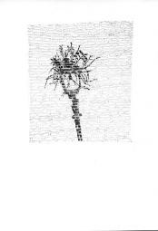 mensgemaakt voorwerp + plantenelementen_002